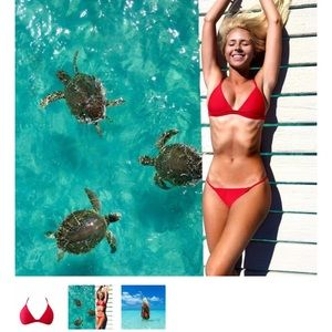 lsea swimwear